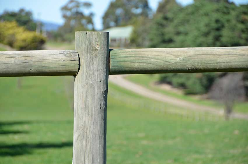 Post and single rail fencing